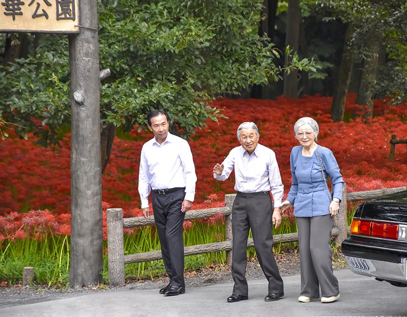 Sus Majestades quienes se ondea la mano a en un Kinchakuda racimo amarilis parque