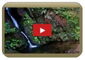 瀧澤的瀑布
